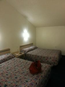 motel 6 room