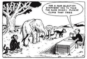 climb this tree